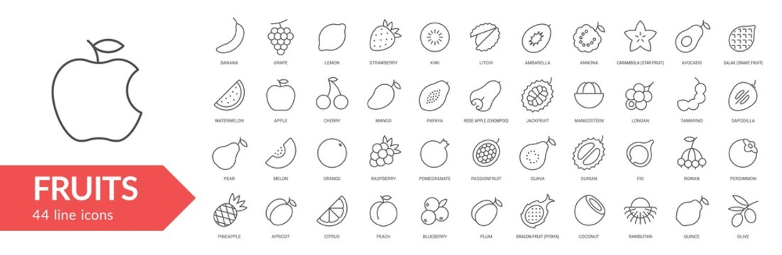 Fruits line icon set. Isolated signs on white background. Vector illustration. Collection