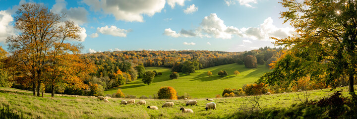 Autumn farmland scene of with sheep in a field in the beautiful Surrey Hills, England