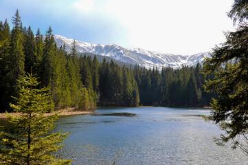 Panorama Tatr nad leśnym jeziorem., Ośnieżone szczyty widziane ze Słowackiego Parku Narodowego