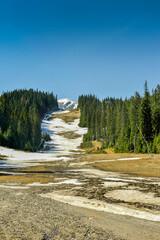 resztki śniegu na stoku narciarskim na Słowacji
