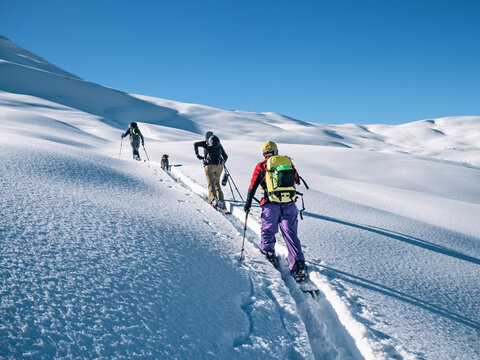 Active people ski touring on mountain skis and splitboard at sunny winter day