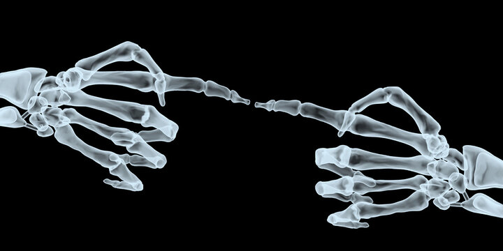 Two human hands pointing each other with index finger xray