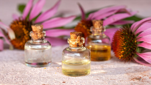 Bottles of essential oil with echinacea flowers in the background