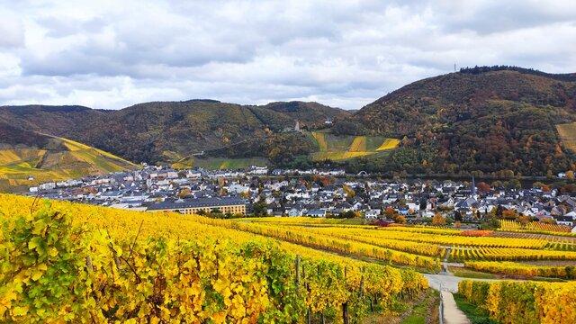 Herbststimmung um Bernkastel-Kues