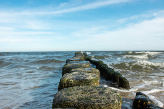 Selective focus of a line of wooden weathered breakwater poles with blue cloudy sky at baltic sea coast