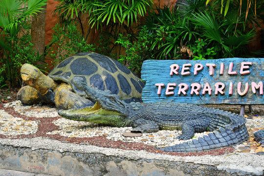 Reptile Terrarium at Dusit Zoo in Khao Din Park, Bangkok, Thailand