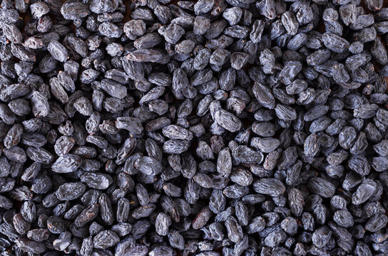 Blue raisin background. Dried grapes