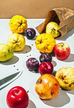 Organic Winter fruit