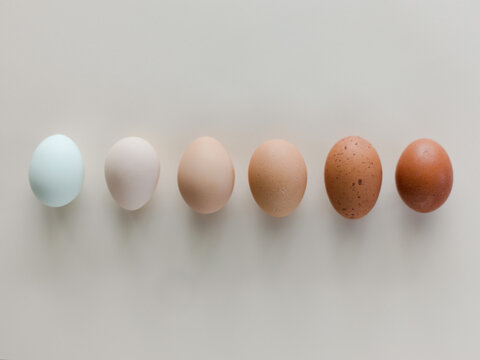 Eggs by color