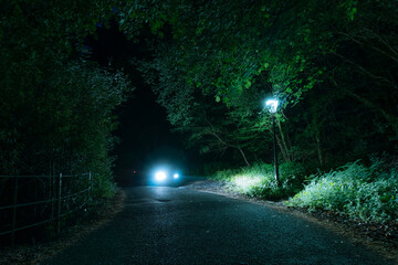 A car parked under a street light on a mysterious forest road Fotomurales
