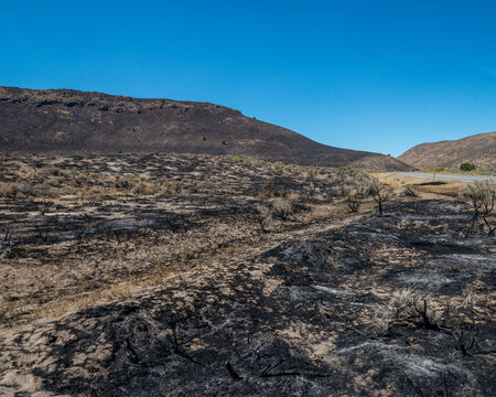 A wildfire leaves charred remains of sagebrush shrublands in the Great Basin Desert, Washoe County, Nevada