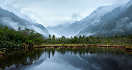 Franz Josef Glacier valley and mountains reflected in Peter's pool in the rain, South Island, New Zealand