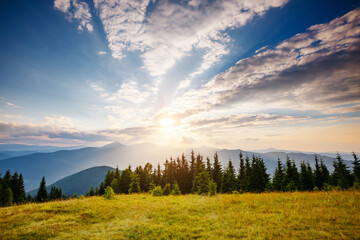 Wall Mural - Magnificent sunny day in tranquil mountain landscape. Perfect summertime wallpaper.
