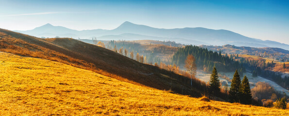 Wall Mural - Beautiful sunny day in incredible mountain landscape. Location place of Carpathian mountains.
