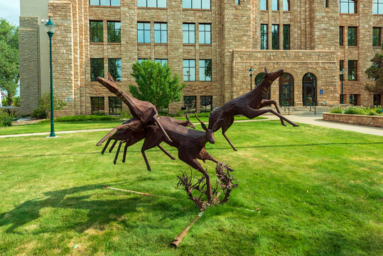 Laramie, Wyoming - July 25, 2014: A Steel Sculpture Depicting Four Pronghorns is Displayed on the Grounds of the Albany County Courthouse