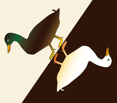 Weibliche und männliche Ente einander zugewandt auf farbigem Untergrund, Illustration für in Art Deco und Jugendstil für Martini und Bauernhof