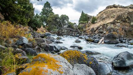 Stream from Mammoth to Gardener Montana in Yellowstone National Park Wall mural