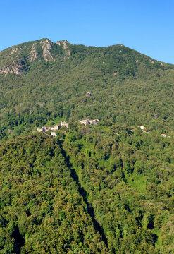 Novale village in Castagniccia forest. Corsica mountain