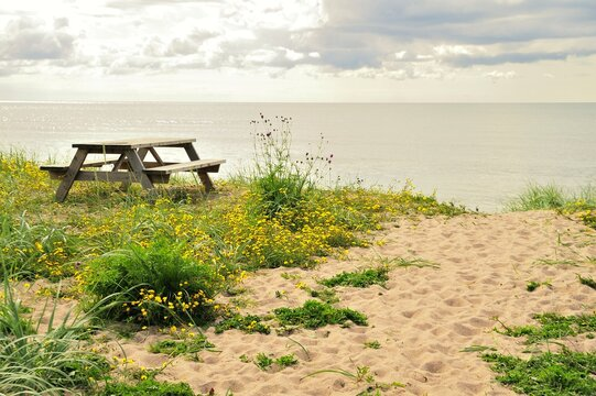 Empty bench by the Baltic Sea, Gotland - Sweden