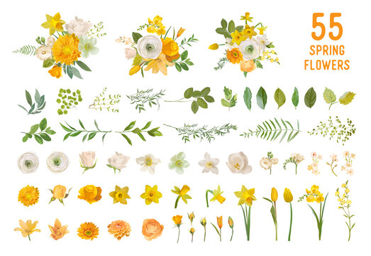 Spring garden flowers, yellow daffodil, mustard rose, white fresia, eucalyptus, greenery, fern