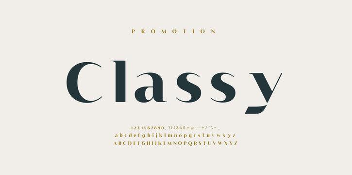 Elegant style alphabet - Decorative alphabet fonts and numbers. Classic Lettering Minimal Fashion Designs. Vector illustration.