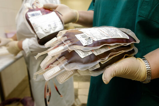scientist's hand holds a red blood bag in the laboratory of a blood Bank unit.The doctor selects fresh donor blood for transfusion.Concept of life saving and medical treatment.