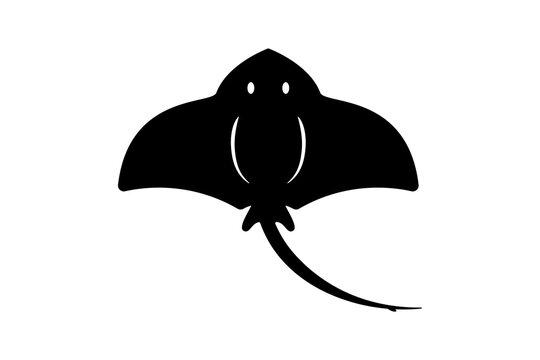 stingray animal icon vector illustration