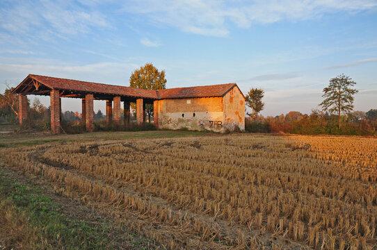 Risaie e colori d'autunno a sud di Milano - Basiglio