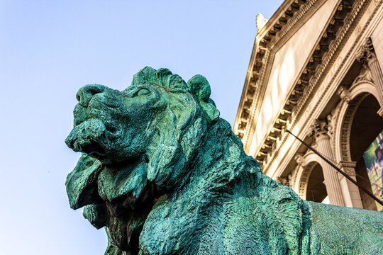 One of the Lions at the Art Institute of Chicago