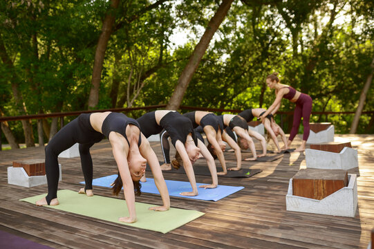 Women in sportswear on group yoga training