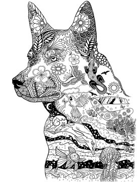 Australian cattle dog black and white illustration