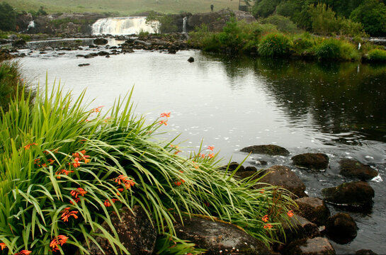 Salmon pool below Lower Assleigh Falls on the Errif River in County Mayo, Ireland