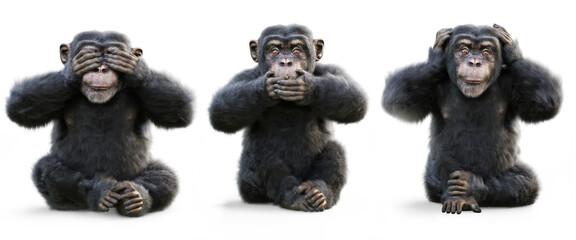 Three wise Monkeys .Monkey see no evil , hear no evil , speak no evil concept . 3d rendering