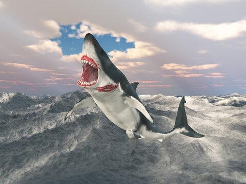Weißer Hai springt aus dem Wasser