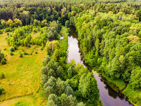 Brda river and Tuchola forest in Poland. Aerial view