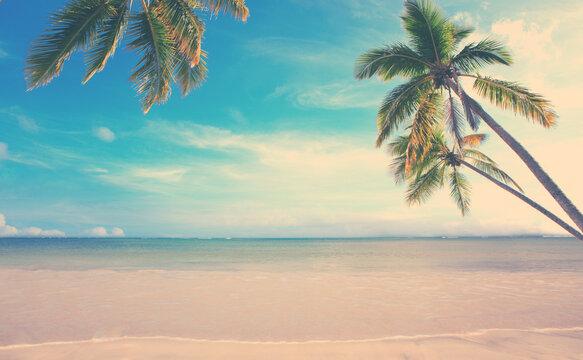 Caribbean sea and green palm trees on white tropical beach.