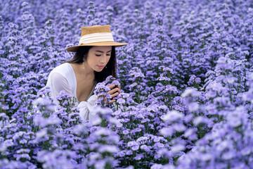 Wall Mural - Beautiful girl in white dress sitting in Margaret flowers fields, Chiang Mai.