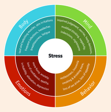 The impact of stress on mind, behavior, emotions and body