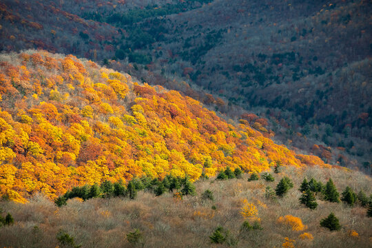 Panoramic view of Catskills mountains at fall from above