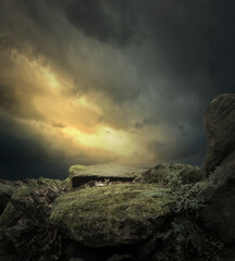 mossy rock background and beautiful sky