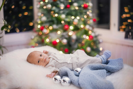 close-up portrait of a newborn baby boy in her arms. happy childhood with a Christmas tree