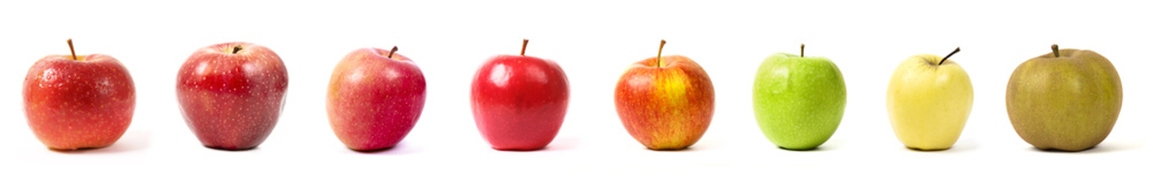different apple varieties on white background