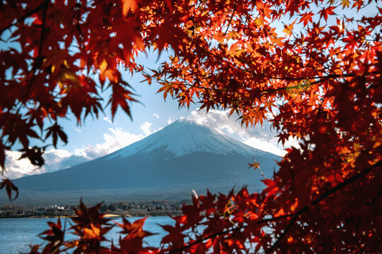 Scenic view of Mount Fuji with maple tree in foreground