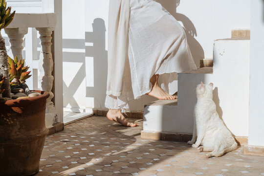 Unrecognizable woman walking up stairs past cat