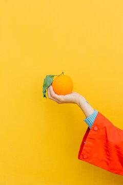hand holding a fresh orange