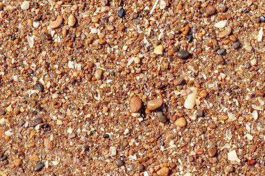 sable, cailloux et coquillages sur la plage