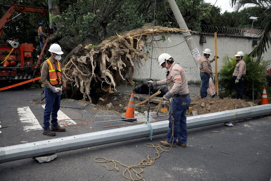 Lineworkers repair a power line damaged by a tree that fell from strong winds caused by tropical storm Eta in San Salvador