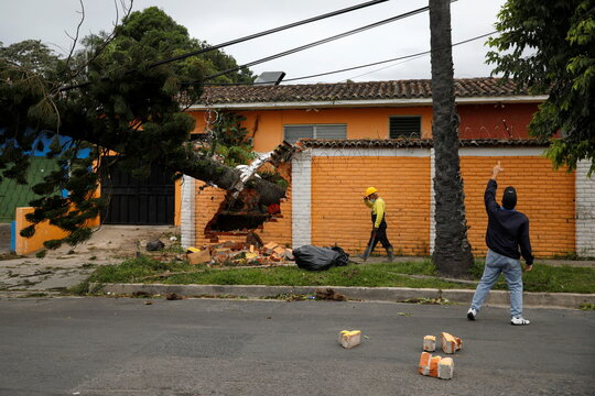 A resident points at a damaged electric power line after a tree fell from strong winds caused by tropical storm Eta in San Salvador