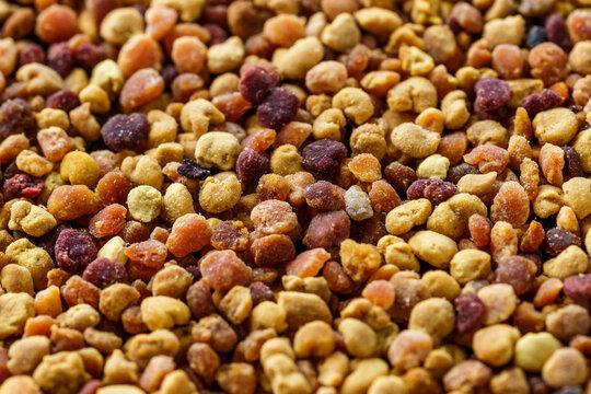 Macro shot of bee pollen or perga.Raw brown, yellow, orange and blue flower pollen grains or bee bread packed by worker honeybees. Healthy food supplement