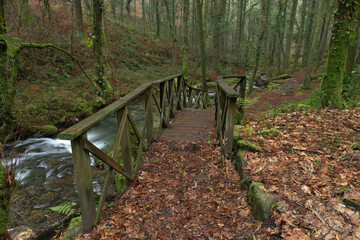 Old wooden staircase to the Fraga river in the community of Galicia